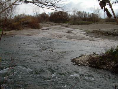 20090124211529-montanana-invierno-de-2009-005.jpg