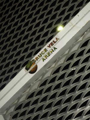 20110116204954-bruce-vela-arena-2.jpg