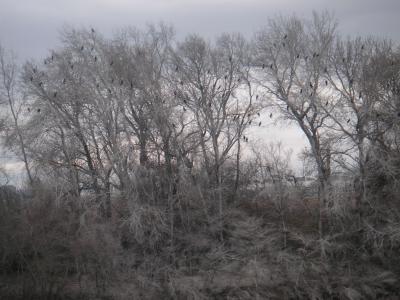 20110220211602-febrerodos-2011-017.jpg