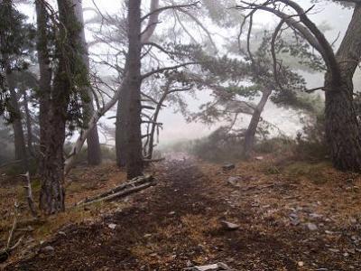 20110929174819-moncayo-descenso-03-dos.jpg