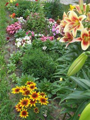20120812215422-rusia-jardines-3.jpg