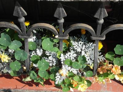 20120812221306-rusia-jardin-6.jpg