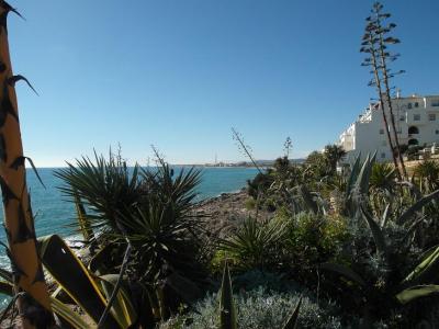 20130210174220-playa-vilanova-cinco-febrero-2013-093.jpg