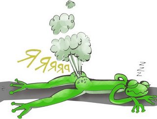 20080607181353-grenouille.jpg