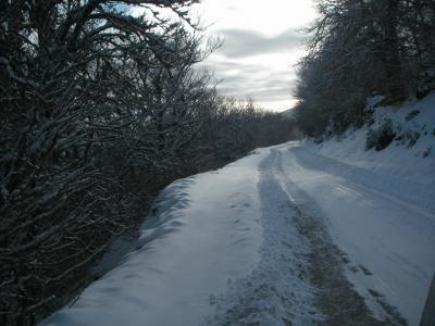 20090103171906-invierno-de-2008-022.jpg