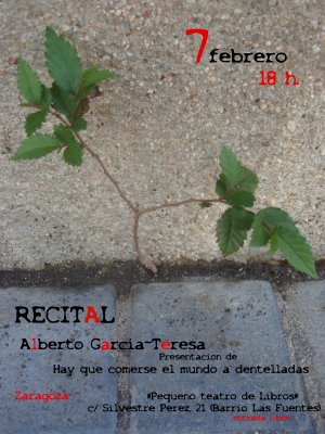 20090208201847-recital-7-febrero-zaragoza.jpg