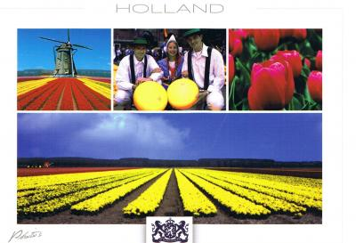 20090221204343-tulipanes.jpg