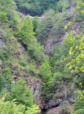 20090517224118-barranco-culmine-san-pietro.jpg