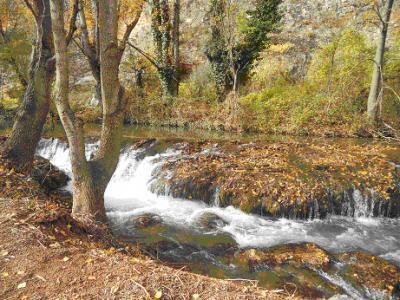 20120103134553-nuevalos-jaraba.jpg