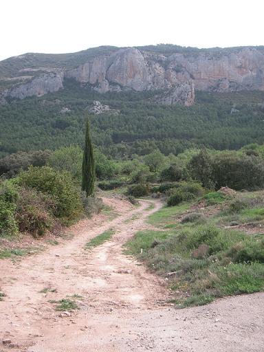 20120517095203-romeria-virgen-de-la-pena-anies-2012-003dos.jpg