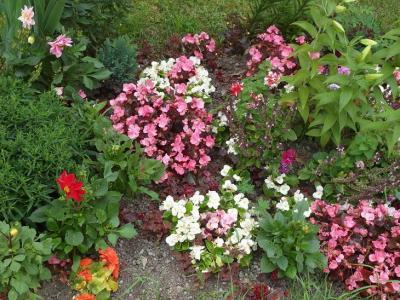 20120812215225-rusia-jardines-2.jpg