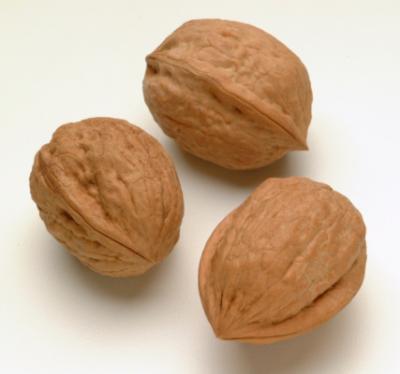 20121112154610-las-nueces-un-alimento-completo.jpg