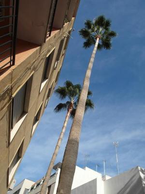 20121223122519-roquetas-de-mar-en-almeria-095.jpg