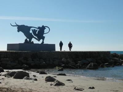 20130210173241-playa-vilanova-dos-febrero-2013-064.jpg