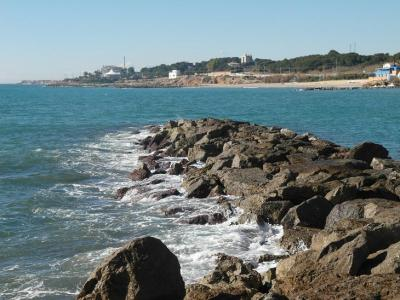 20130215103612-playa-vilanova-ocho-febrero-2013-075.jpg